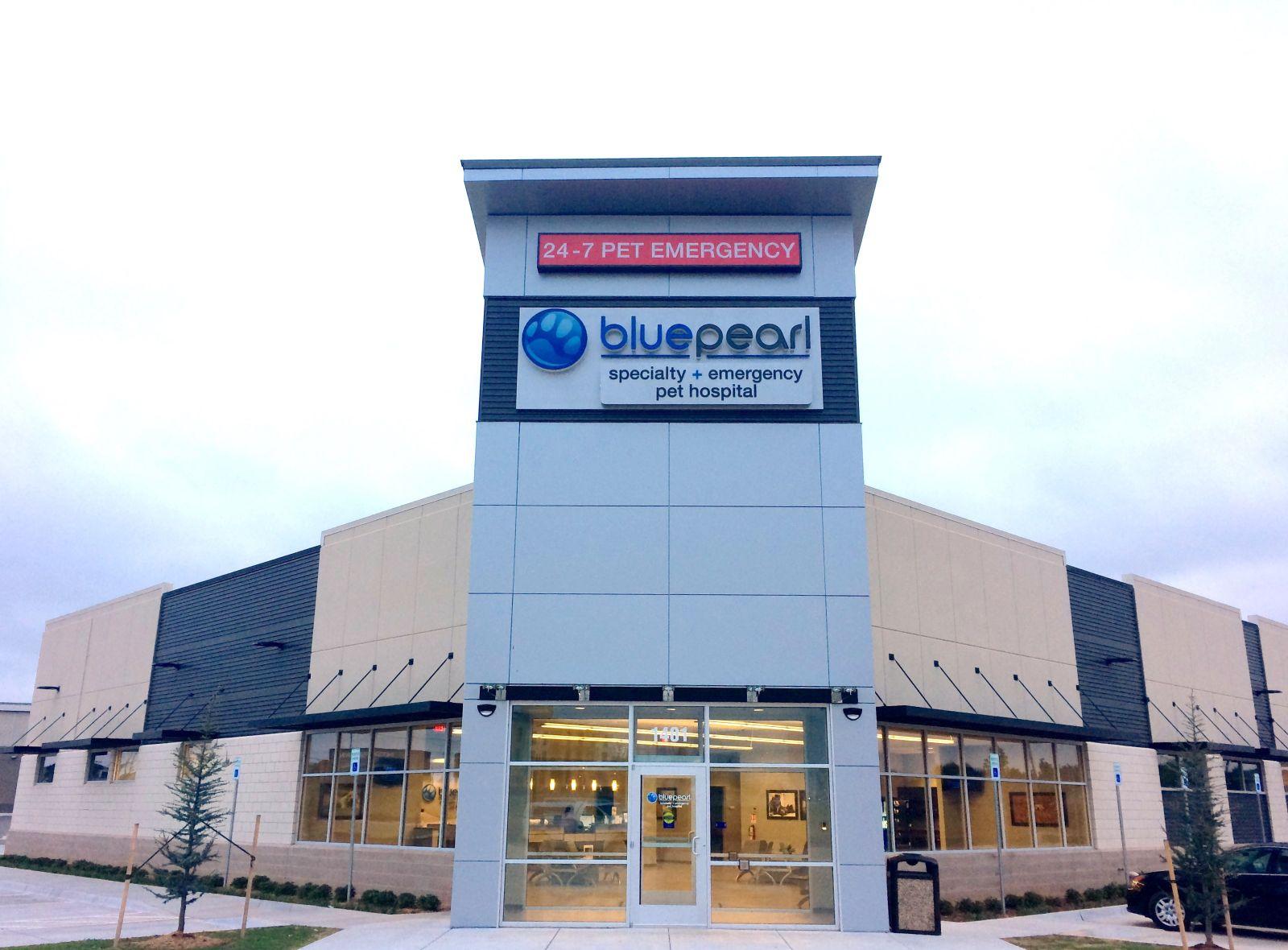 FT-Blue Pearl Vet